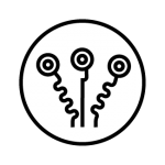 actividades_icon